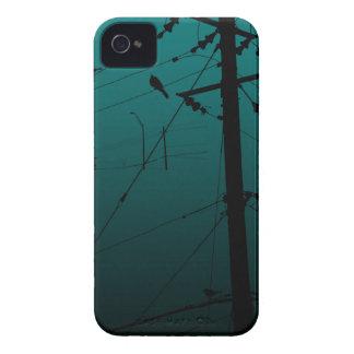 pájaro Case-Mate iPhone 4 protectores