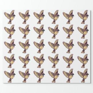 Pájaro coloreado dharp hermoso papel de regalo
