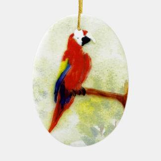 Pájaro colorido del Macaw Adornos