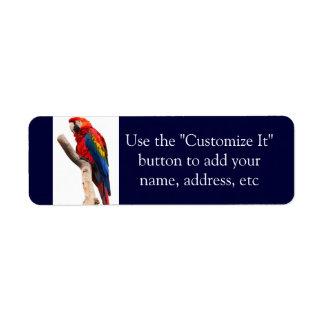 Pájaro colorido hermoso del loro del Macaw del Etiquetas De Remite