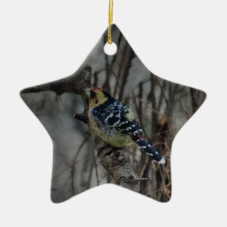 Pájaro con cresta del perro de aguas adorno de cerámica en forma de estrella
