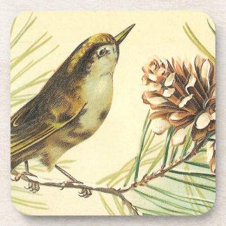 Pájaro con el ejemplo del vintage del cono de posavasos