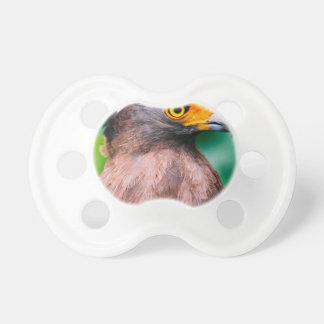 Pájaro con el pico curvado chupete de bebé