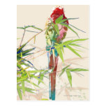 Pájaro con las hojas de bambú tarjeta postal