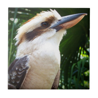 pájaro contra Kookaburra verde Azulejo Cuadrado Pequeño