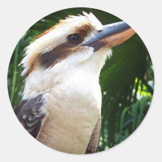 pájaro contra Kookaburra verde Pegatina Redonda