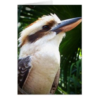 pájaro contra Kookaburra verde Tarjeta De Felicitación