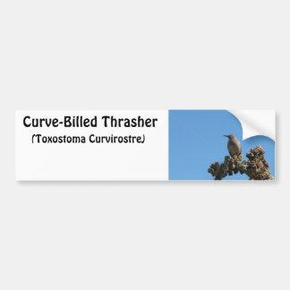 pájaro Curvar-cargado en cuenta de Thrasher Pegatina Para Auto