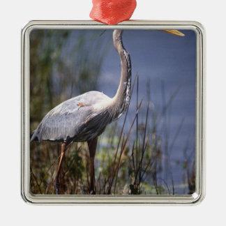 Pájaro de agua de la garza de gran azul encontrado ornamento de navidad
