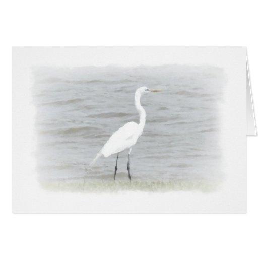 Pájaro de agua tarjeta de felicitación