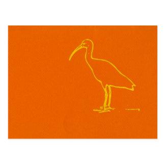 Pájaro de agua tarjeta postal