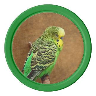 Pájaro de Budgie Juego De Fichas De Póquer