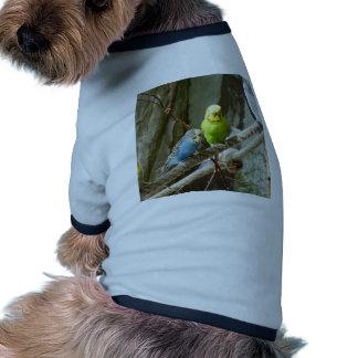 Pájaro de Budgie Camisetas De Perro