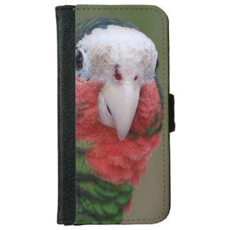 Pájaro de Conure Carcasa De iPhone 6
