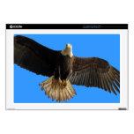 Pájaro de Eagle calvo que vuela del arte de la pre Calcomanías Para Portátiles