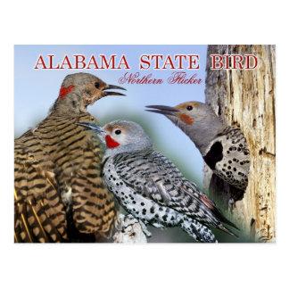 Pájaro de estado de Alabama - parpadeo Postal