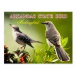 Pájaro de estado de Arkansas - Mockingbird Postales