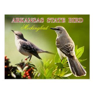 Pájaro de estado de Arkansas - Mockingbird Tarjetas Postales