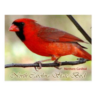 Pájaro de estado de Carolina del Norte - cardenal Postales