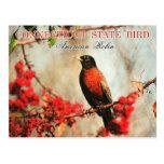 Pájaro de estado de Connecticut - petirrojo americ Tarjeta Postal