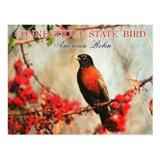 Pájaro de estado de Connecticut - petirrojo Postal