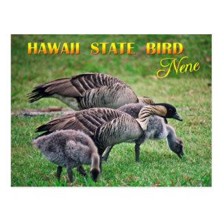 Pájaro de estado de Hawaii - Nene o ganso hawaiano Postal
