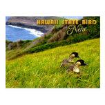 Pájaro de estado de Hawaii - Nene o ganso hawaiano Postales