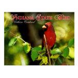 Pájaro de estado de Indiana - cardenal septentrion Postal