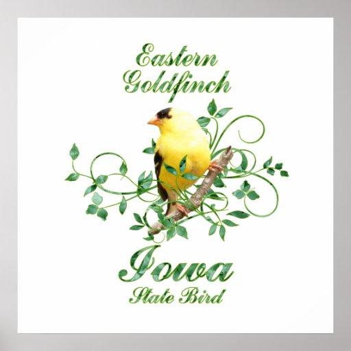 Pájaro de estado de Iowa del Goldfinch Póster