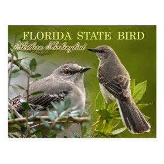 Pájaro de estado de la Florida - Mockingbird Tarjeta Postal
