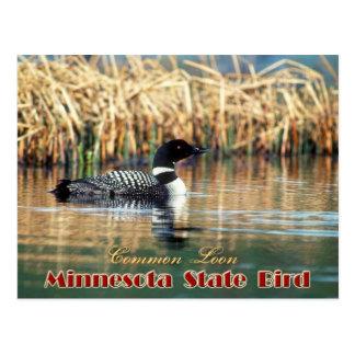 Pájaro de estado de Minnesota - bribón común Tarjetas Postales