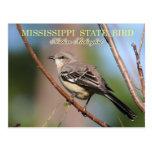 Pájaro de estado de Mississippi - Mockingbird sept Tarjeta Postal