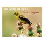 Pájaro de estado de New Jersey - Goldfinch del est Postal
