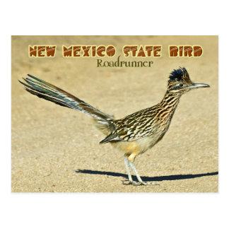 Pájaro de estado de New México: Roadrunner Tarjeta Postal