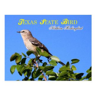 Pájaro de estado de Tejas - Mockingbird septentrio Postal