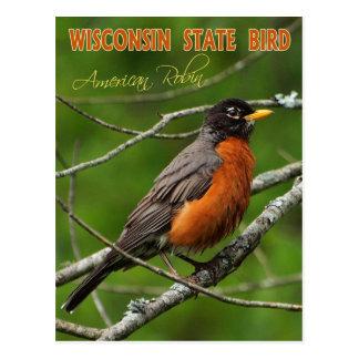 Pájaro de estado de Wisconsin - petirrojo Tarjeta Postal