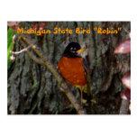 """Pájaro de estado femenino de Michigan """"petirrojo """" Tarjetas Postales"""