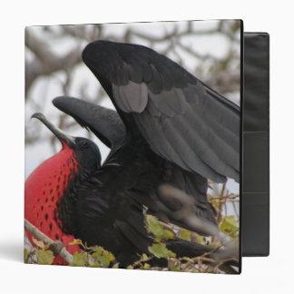 """Pájaro de fragata magnífico carpeta 1 1/2"""""""