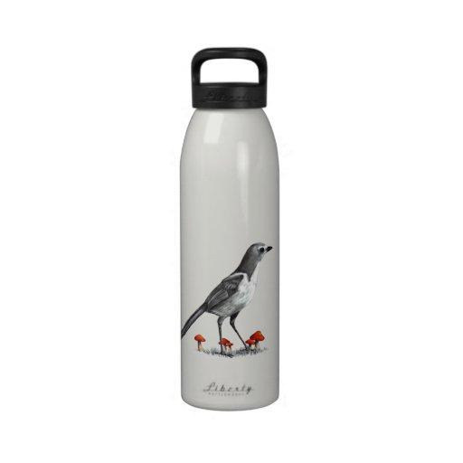 Pájaro de Jay con las setas rojas: Arte del lápiz Botella De Beber