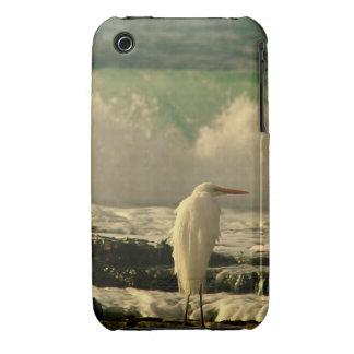 Pájaro de la alta marea iPhone 3 carcasa
