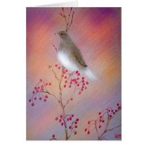 Pájaro de la canción tarjetón