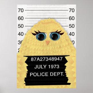 Pájaro de la cárcel póster