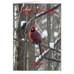 pájaro de la Cardinal-canción en tarjeta de cumple