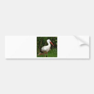 Pájaro de la cigüeña blanca etiqueta de parachoque