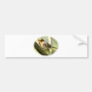 Pájaro de la fauna del petirrojo etiqueta de parachoque