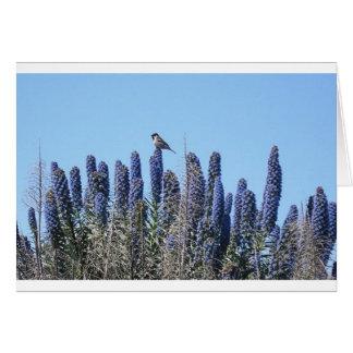 Pájaro de la flor tarjeta de felicitación