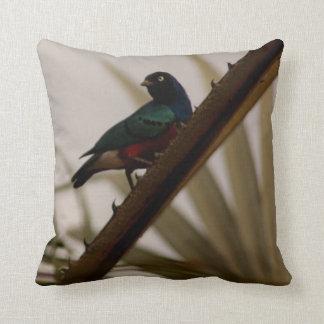 pájaro de la foto 7-Kenya del pájaro Cojines