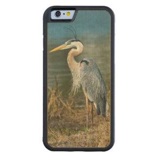 Pájaro de la garza de gran azul en la charca funda de iPhone 6 bumper arce