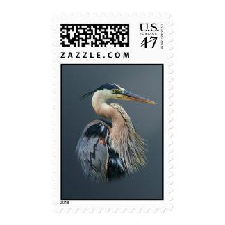 Pájaro de la garza de gran azul en la charca estampilla