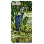 Pájaro de la garza de gran azul en la charca funda de iPhone 6 plus barely there